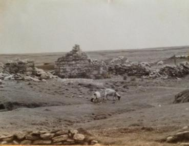 This is the ruins of the house in Dookinella where Pat Toolis & Mary Barrett lived until 1932